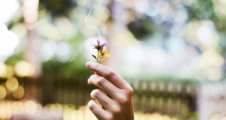 Räuchern einer Blume